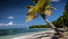 Mustique-Beaches-17